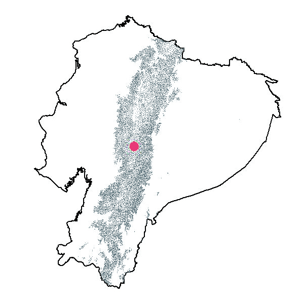 Mapa De Cestrum Viridifolium